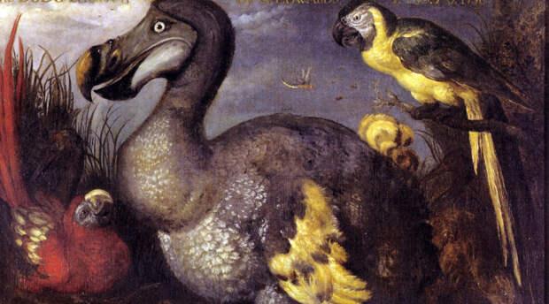 10 существ, которых ученые могут вернуть с того света