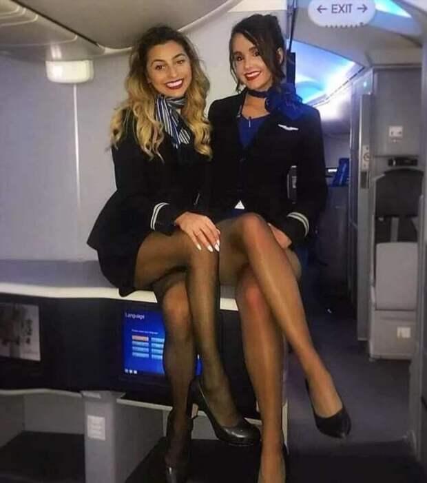 Ножки стюардесс. Подборка chert-poberi-styuardessy-chert-poberi-styuardessy-57310504012021-15 картинка chert-poberi-styuardessy-57310504012021-15