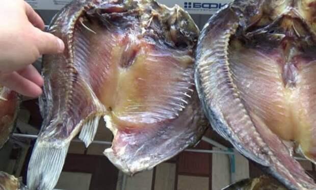 Солим рыбу методом сибиряков: доходит на балконе за неделю