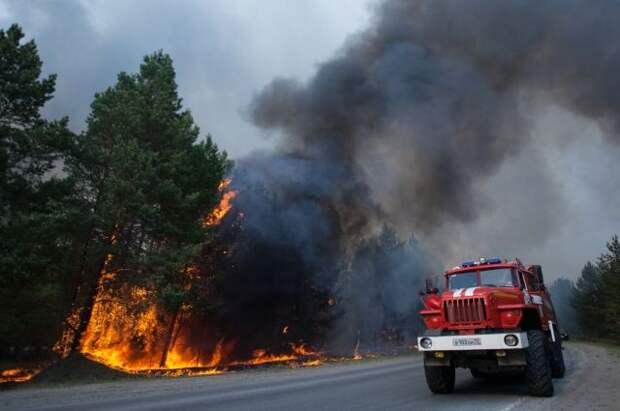 Движение на трассе «Екатеринбург – Тюмень» остановили из-за лесного пожара