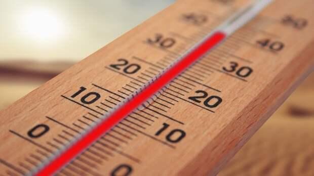 Воздух в Москве прогреется до 31 градуса во вторник