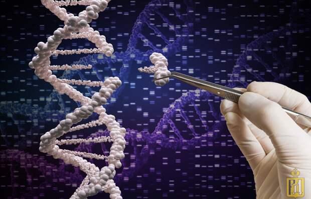 Мир Хаксли становится реальностью: ВОЗ выпустил рекомендации по редактированию генома человека.