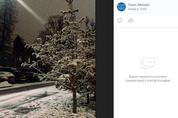 Фото дня: зимний вечер в поселке художников