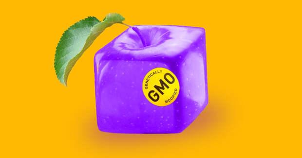 Какие 3 вида российских продуктов содержат ГМО?