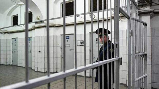 Юлия Витязева: Визг предателей потерпим. Для протокола