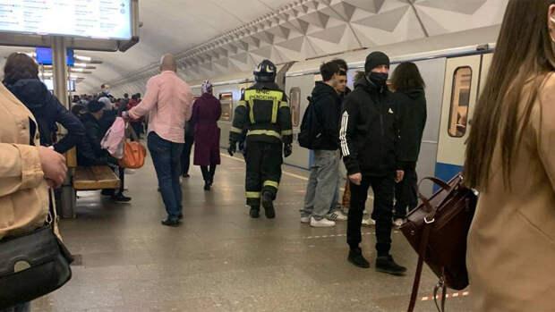 Движение поездов на серой ветке московского метро восстановлено после падения пассажира
