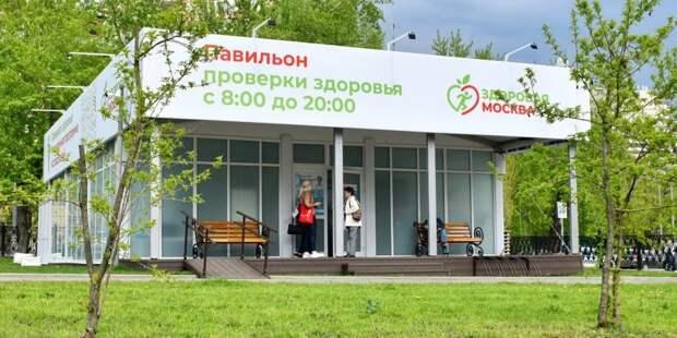 В ВОЗ оценили программу медосмотров в павильонах «Здоровая Москва». Фото: Ю. Иванко mos.ru