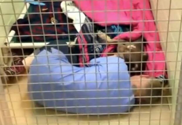 Волонтер приюта шла проверить песика после операции, но обнаружила нечто восхитительное!