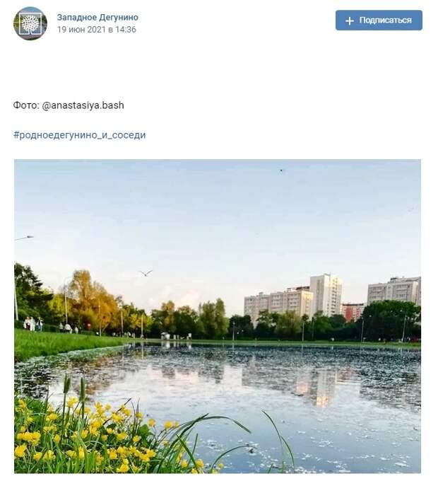 Фото дня: лютики в парке на Ангарских