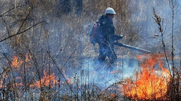 Первый замглавы МЧС вылетает в Тюмень для контроля тушения пожаров