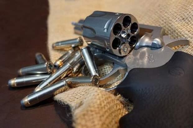 Депутаты предложили наделить Росгвардию правом утилизации оружия