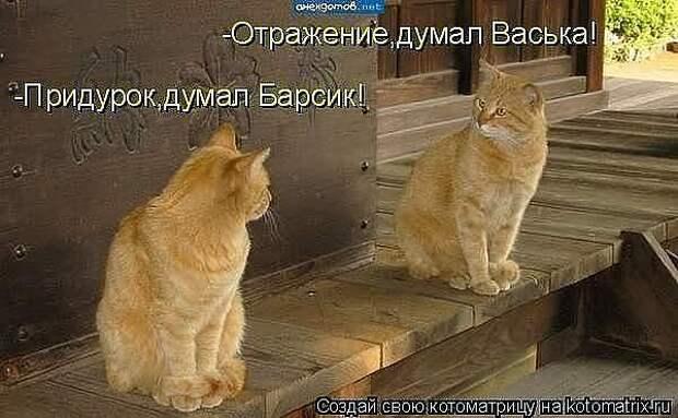 1348323800_getImage_13 (600x371, 41Kb)