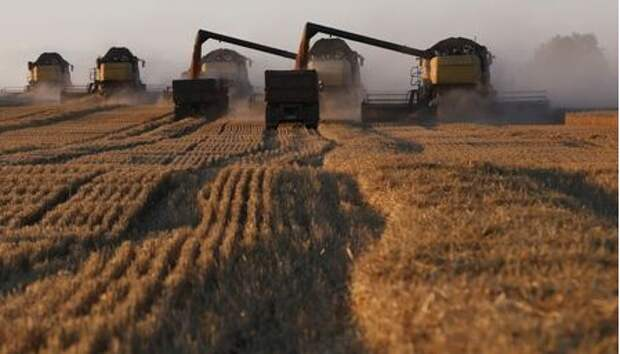 Combine harvesters work on a wheat field of the Solgonskoye farming company near the village of Talniki, southwest from Siberian city of Krasnoyarsk, Russia, August 27, 2015. Russia, one of the world's top wheat exporters, will harvest its third-largest grain crop in post-Soviet history this year, leading Russian consultancy SovEcon said on August 27 after upgrading its forecast. Picture taken August 27, 2015. REUTERS/Ilya Naymushin