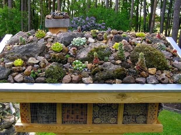 Необычный домик для насекомых