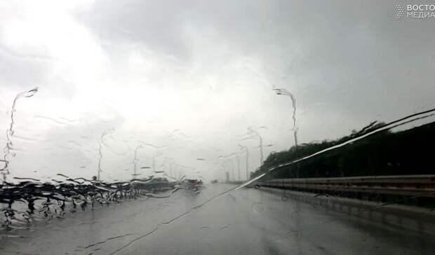 Быть дождю: синоптики дали прогноз погоды нарабочую неделю вПриморье