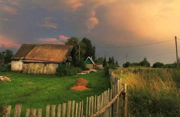 Почему все больше россиян переезжают из городов в деревни: 4 веские причины