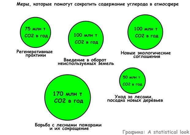 Названо главное природное богатсво России, от которого страна может получать до $50 миллиардов прибыли в год