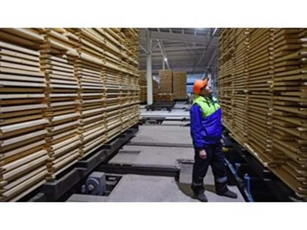 Лес рубят — деньги летят: почему стройматериалы так подорожали