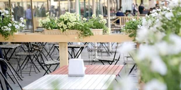 Собянин: С 16 июня в Москве заработают летние кафе. Фото: mos.ru