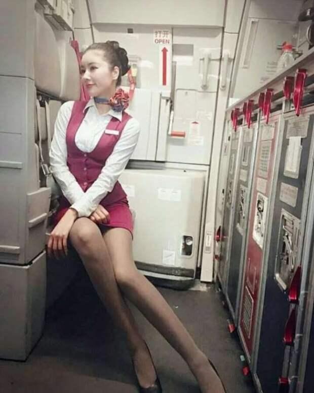 Ножки стюардесс. Подборка chert-poberi-styuardessy-chert-poberi-styuardessy-57310504012021-7 картинка chert-poberi-styuardessy-57310504012021-7