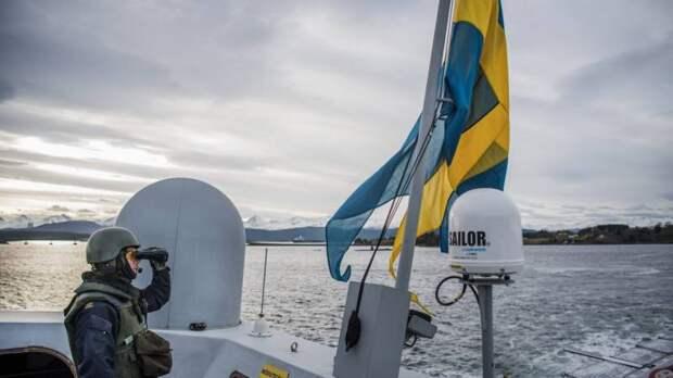 Особенности оборонной стратегии и военного строительства в Швеции