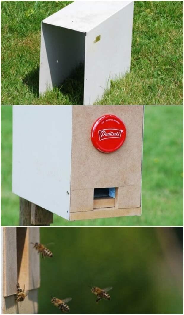 Ульи бывают и такими. 8 функциональных идей в помощь пчеловодам