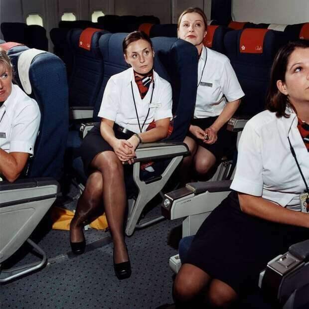Ножки стюардесс. Подборка chert-poberi-styuardessy-chert-poberi-styuardessy-57310504012021-1 картинка chert-poberi-styuardessy-57310504012021-1