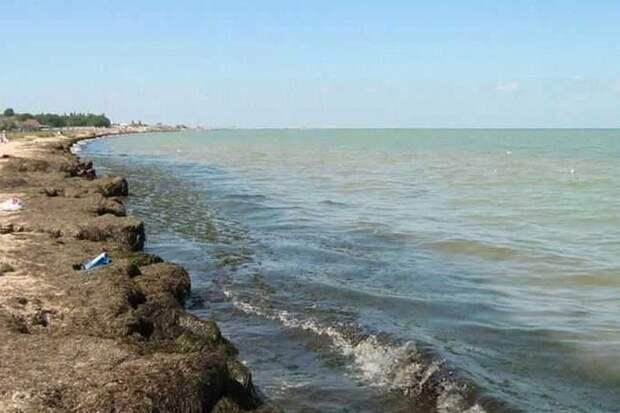 На пляжах в крымском селе Песчаное полно водорослей и нет фонарей