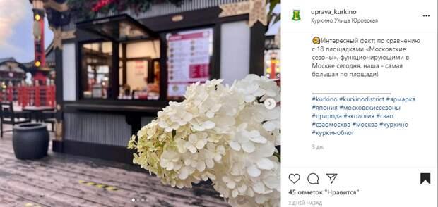 «Маленькая Япония» на Юровской вновь распахнула двери для посетителей