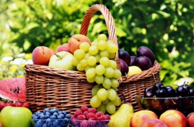 Как употребление фруктов влияет на увеличение мозга