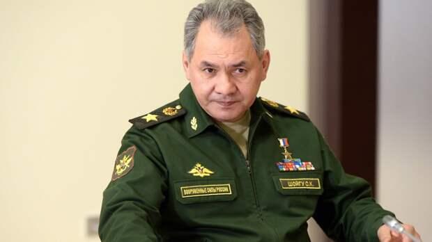 Список с главными достижениями Шойгу на посту главы Минобороны РФ появился в Сети