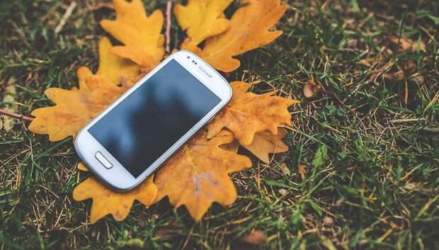 Мобильное приложение по контролю за работой дворников заработает в Подмосковье в декабре