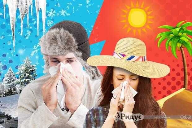 Названы регионы РФ, где аллергики могут переждать период цветения