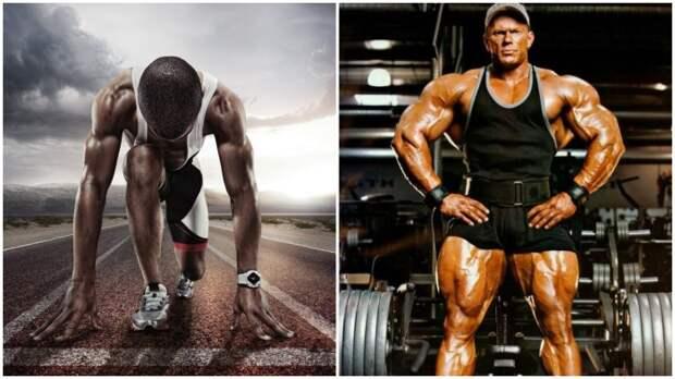 Многие спортсмены употребляют пищевой желатин вместо дорогостоящего коллагена / Фото: ucrazy.ru