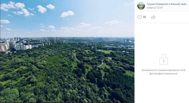 Фото дня: зелёный рай Тушина