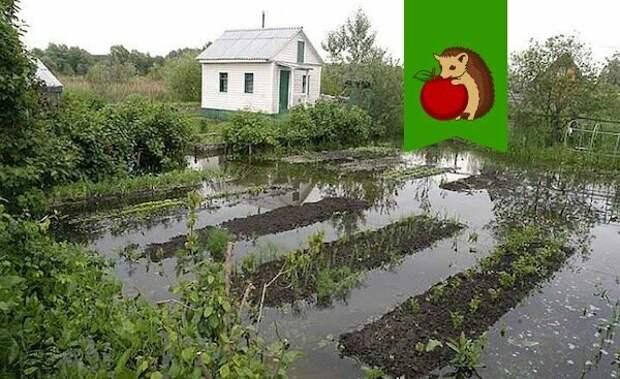 Фото: http://www.stroy-podskazka.ru/images/article/orig/2018/05/gruntovye-vody-na-uchastke-kak-uznat-i-ponizit-uroven-1.jpg