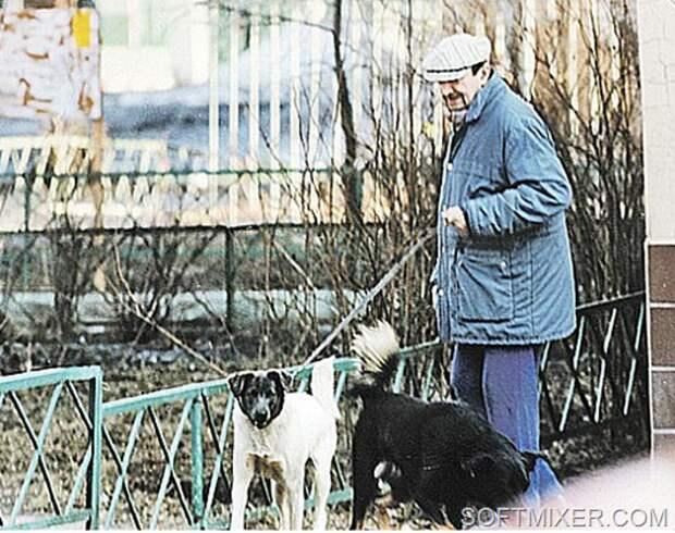 """Смелый """"трус"""" Георгий Вицин artist, кино, судьба"""