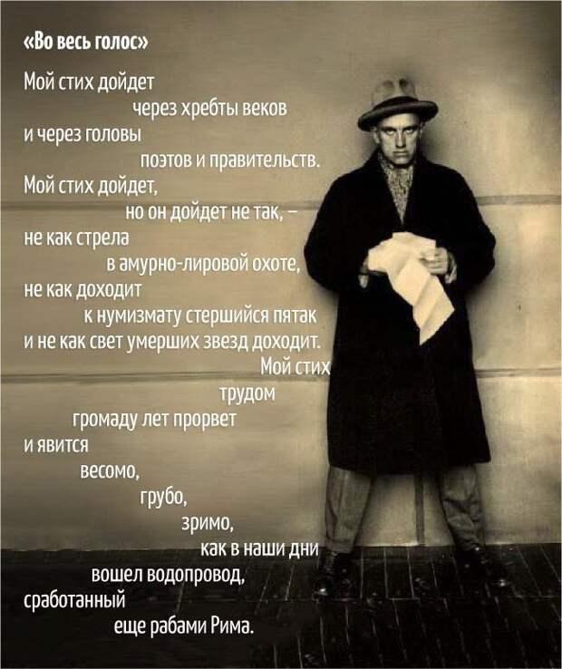 Смешные истории и анекдоты от Михалыча!