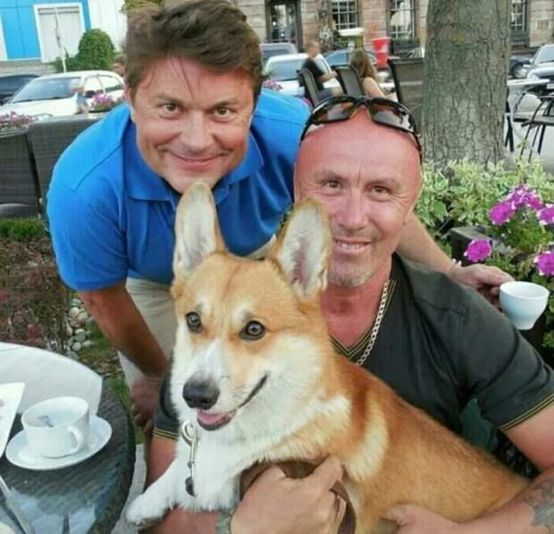 Собаку вельш корги с щенками оставили в лесу, но ей помогли добрые люди, и теперь она находится в безопасности