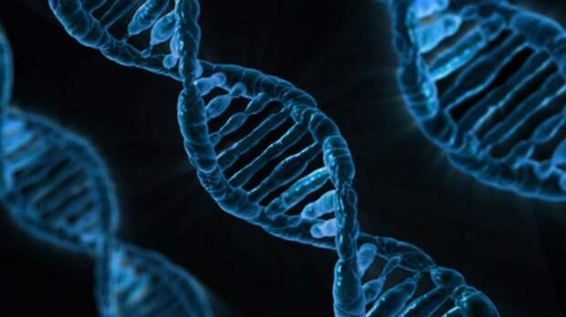 В Израиле уже используют новейшую технологию лечения рака. Это революция в онкологии