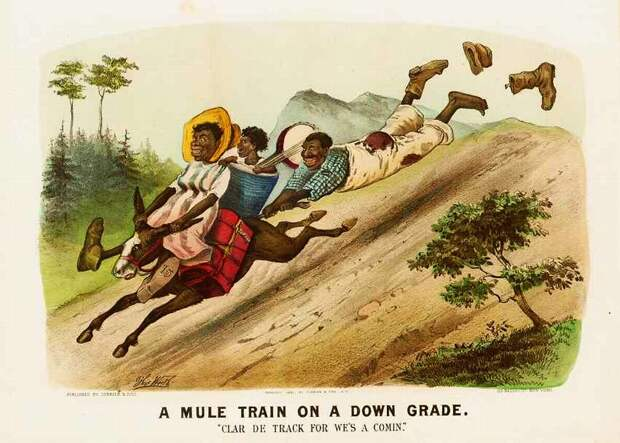 Поездка на муле: спуск с холма