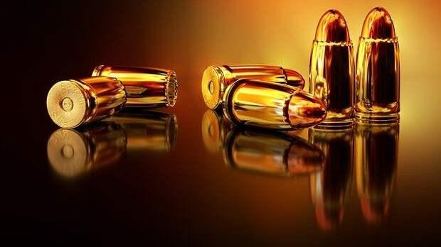 Сенаторы от Крыма повторно предложат разрешать покупку оружия не раньше, чем в 21 год