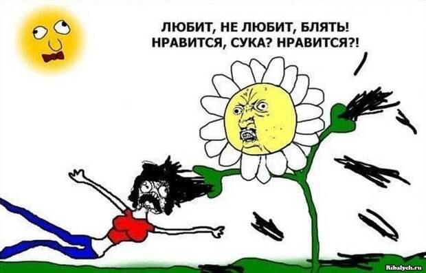 Отличный юмор в картинках для поднятия настроения
