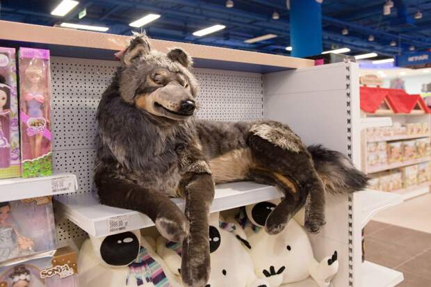 detskijmir25 Самый большой магазин игрушек в России