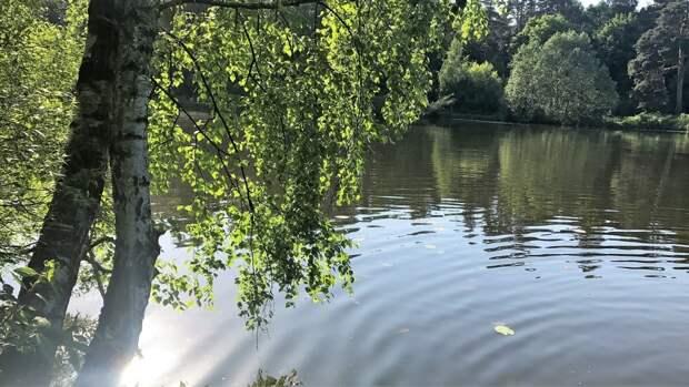 Москвичам сообщили о переносе начала купального сезона из-за ухудшения погоды