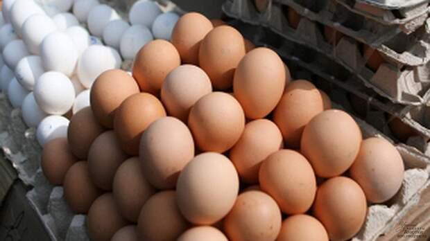 Россия больно ударила Прибалтику по яйцам