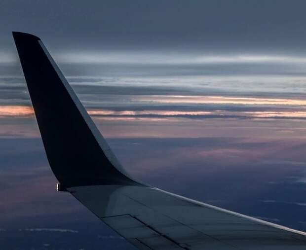 ФАС предложила властям выкупать ваучеры авиапассажиров или менять их на билеты на поезд