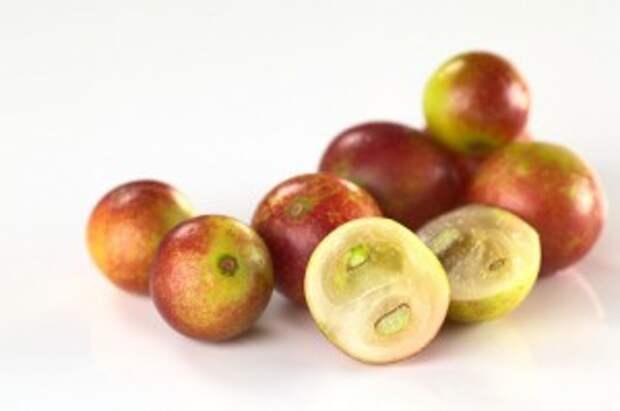 Знакомимся с экзотическими фруктами (Ч. 11-я)