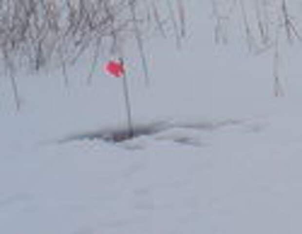 Ловля щуки на зимние жерлицы