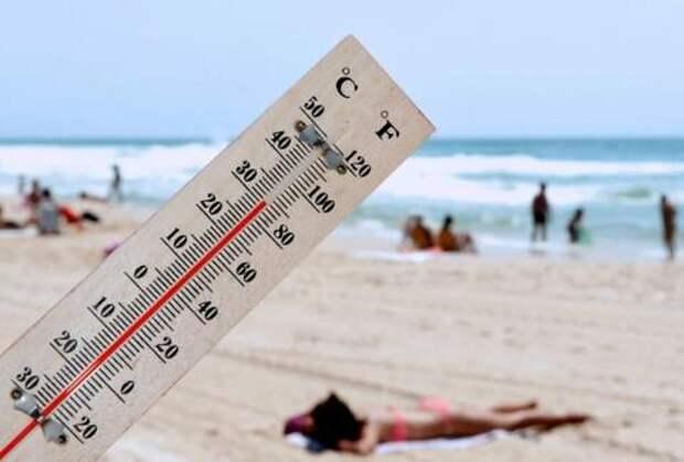 В Краснодарском крае воздух прогреется до + 31 С